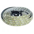 Vodotěsný LED pásek, 5m, 300 LED, studená bílá, SMD2835