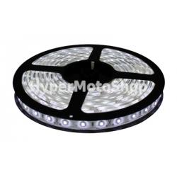 LED pásek, 5m, 300 LED, studená bílá, SMD3528